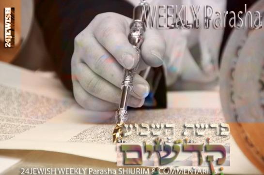 weeklyparashaxycmkedoshim