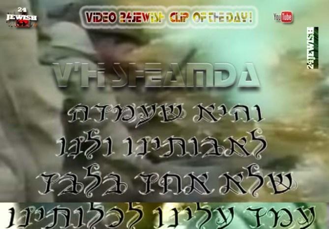 clip-Vhii Sheamda