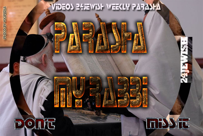weekly-parasha-dont-NEW